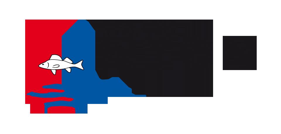 1.1_vdn_id_logo